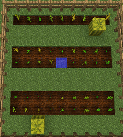 minecraft pumpkin farm image